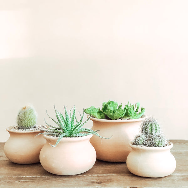 Pale Terracotta Wash Pot Planters