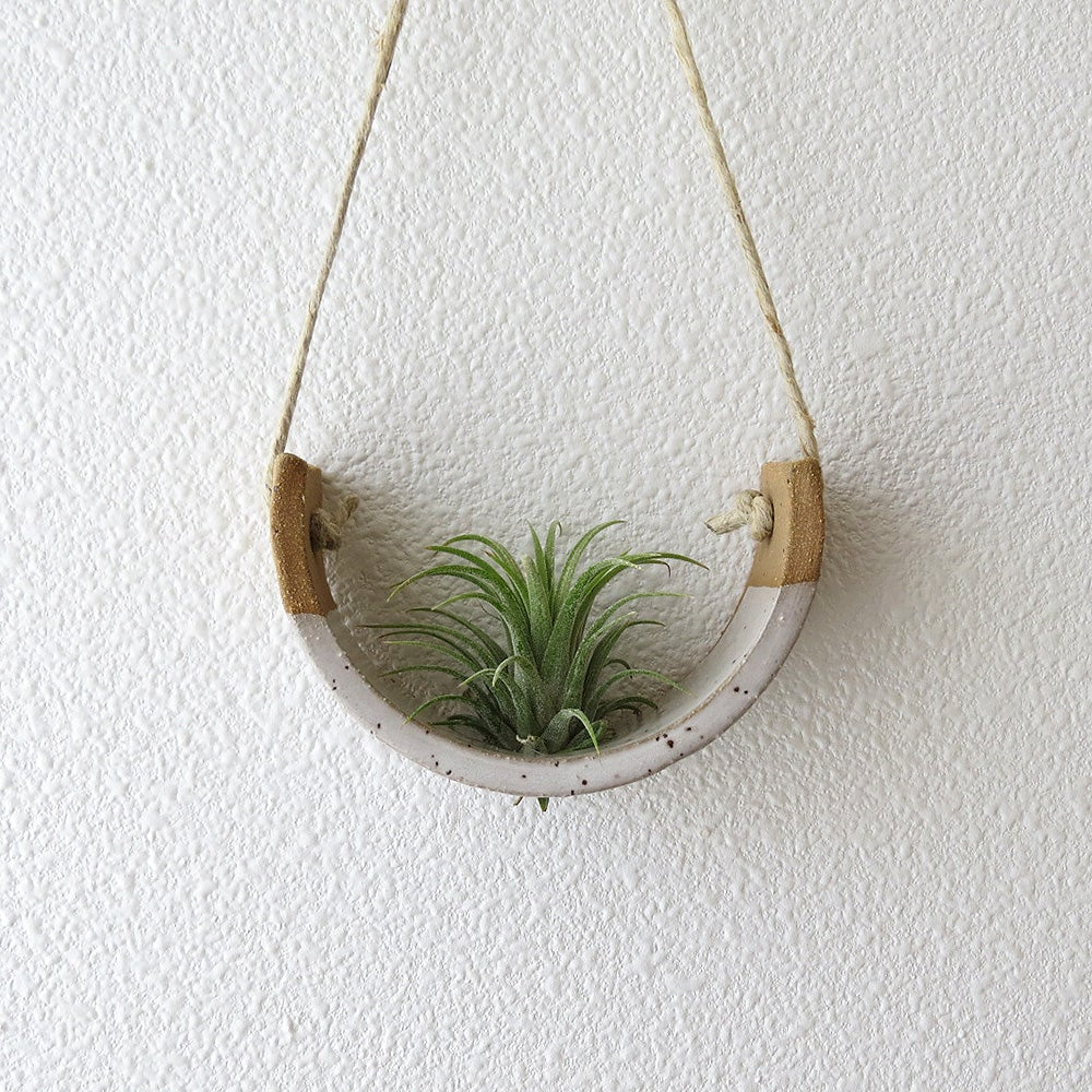 Mudpuppy: Air Plant Cradle in Speckled Buff, Small