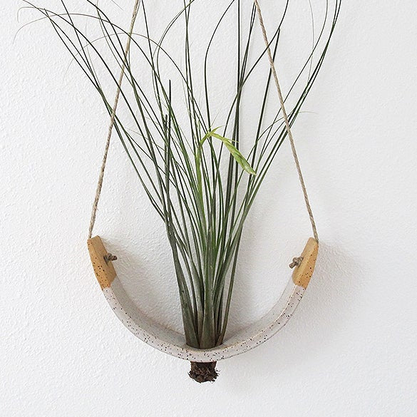 Mudpuppy: Air Plant Cradle in Speckled Buff, Large