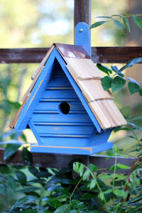 New Chick Birdhouse Blueberry