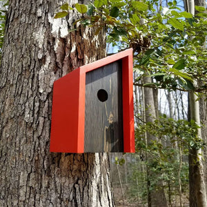 Minimalists Red Cedar and Pine Birdhouse