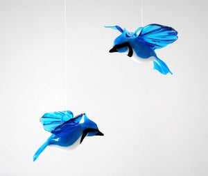 Flying Glass Blue Jay