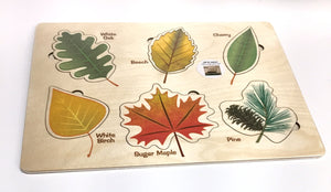 Lift and Learn Leaf Puzzle