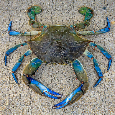Blue Crab Small Puzzle