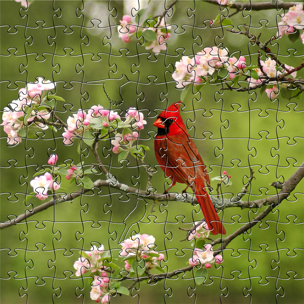 Summer Cardinal Small Puzzle
