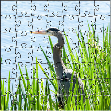 Heron Teaser Puzzle