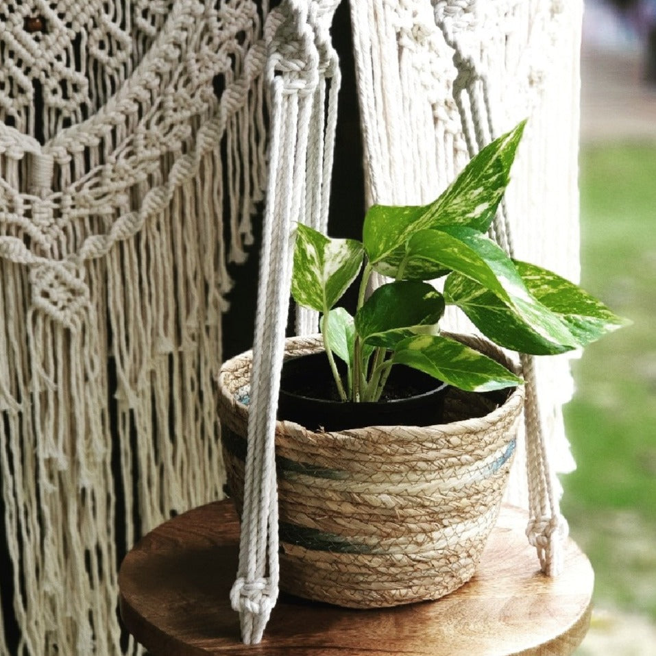 Lorna and Lila Macrame Shelf