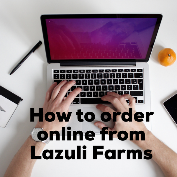 How to order from the Lazuli Farms online shop