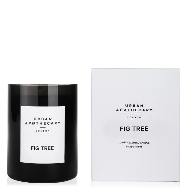 Fig Tree Candle Candles Urban Apothecary