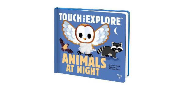 Touch and Explore Animals at Night Kids Books Hachette Book Group
