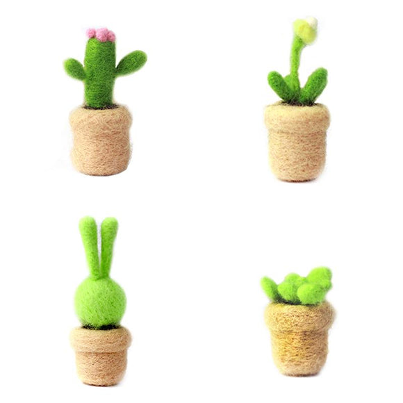 Lovely Succulent Plants Felting Kit