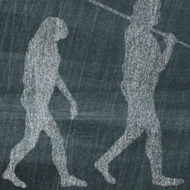 91606 Trends in human evolution