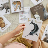 Animal Alphabet Flash Card