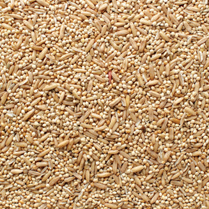 All Natural Parakeet Blend Bird Seed 50 lb. Bag