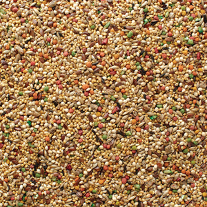 Grains Plus Finch Blend Bird Seed 25 lb. Bag