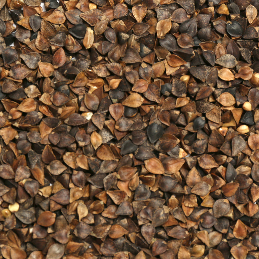 Raw Grains Buckwheat