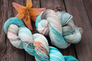 Butterfly BFL-Yarn-Dream in Color-Time Away-The Sated Sheep