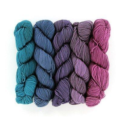 Chesire Cat Gradient-Yarn-Frabjous Fibers-32-The Sated Sheep