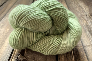 Classy Skein and a Half Worsted!-Yarn-Dream in Color-Sprout-The Sated Sheep