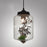 TONYA Hanging Lamp
