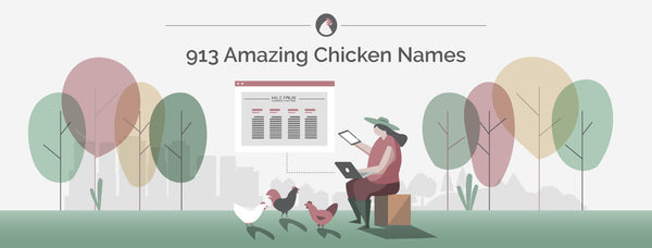 913 Amazing Chicken Names