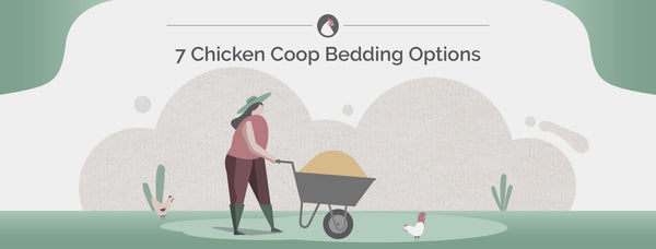 7 Chicken Coop Bedding Options
