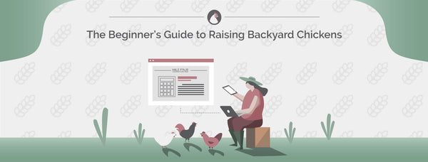 Backyard Chickens | Ultimate Guide for Beginners