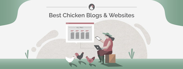 62 Best Backyard Chicken Blogs & Websites