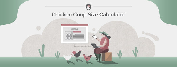 Chicken Coop Size Calculator