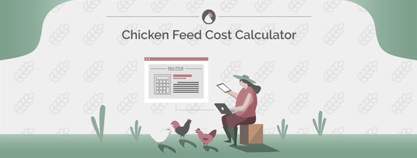 Chicken Feed Cost Calculator