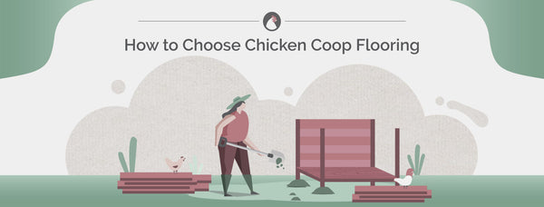 How to Choose Chicken Coop Flooring