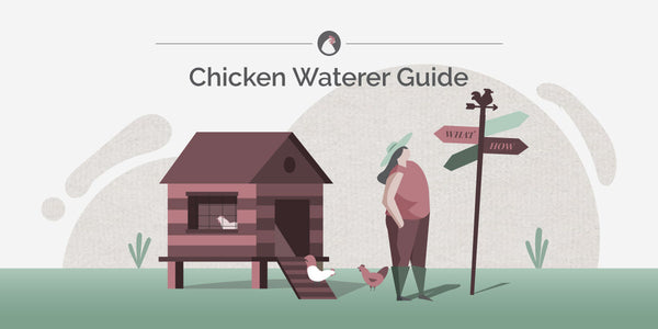 Chicken Waterer Guide