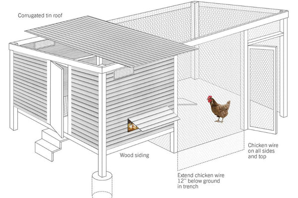 chicken-coop-plan-basic-beauty.jpg