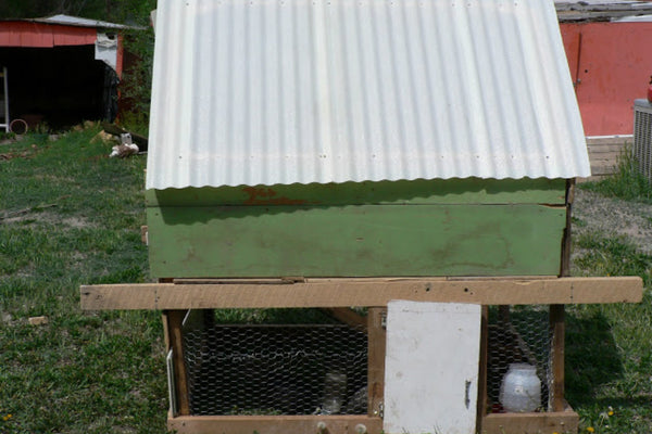chicken-coop-plan-bless-this-mess.jpg