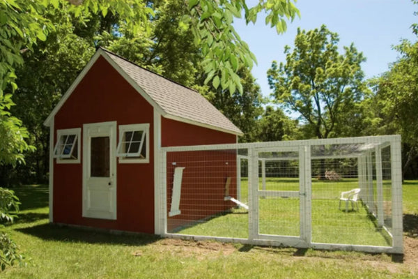 chicken-coop-plan-chicken-garden.jpg