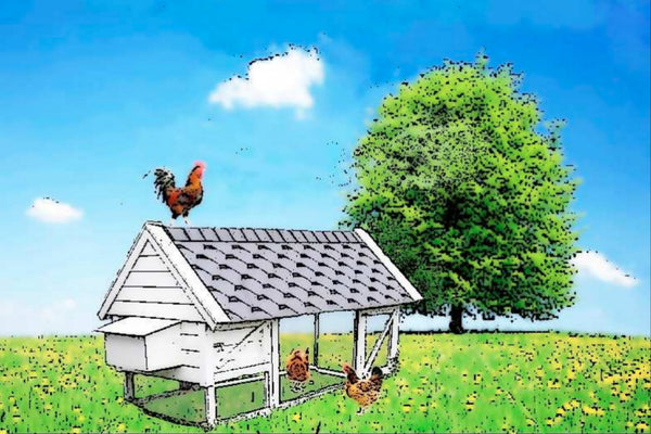 chicken-coop-plan-harriets-house.jpg