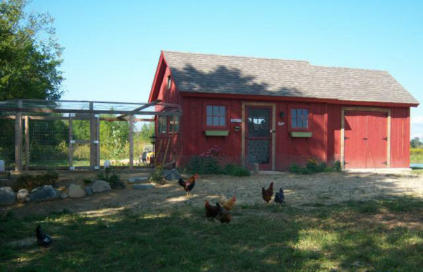 chicken-coop-plan-kassys-hen-house.jpg