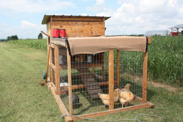 chicken-coop-plan-kerr-center.jpg