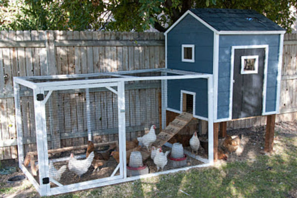 chicken-coop-plan-riverton-ranch.jpg
