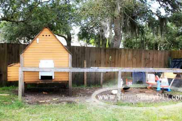 chicken-coop-plan-small-backyard.jpg