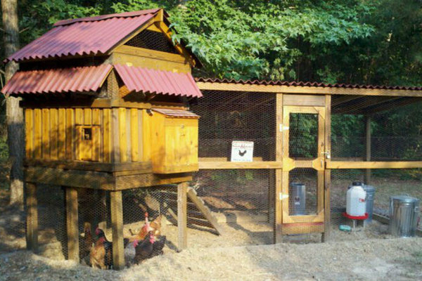 chicken-coop-plan-steadfasts-condo.jpg