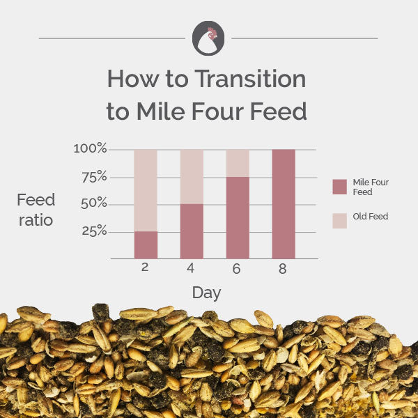 Chicken feed transition chart for Mile Four feed
