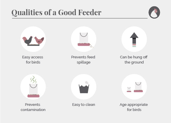 Qualities of a good feeder for chickens