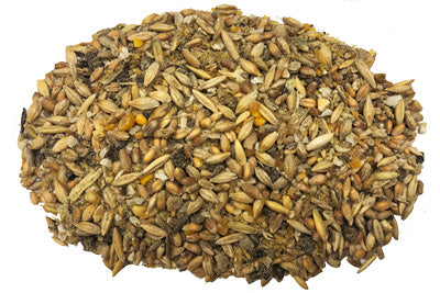 whole grain chicken feed