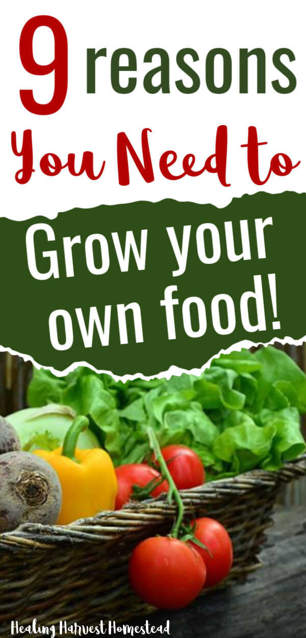 Why You Need to Grow (at Least Some) of Your Own Food! Get Your Personal Victory Garden Going NOW