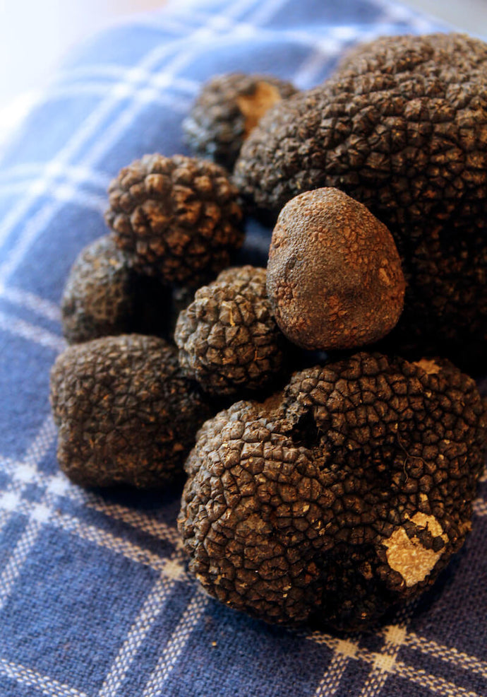 If you've ever heard of truffles or been lucky enough to taste them, it's probably been in the context of gourmet dining