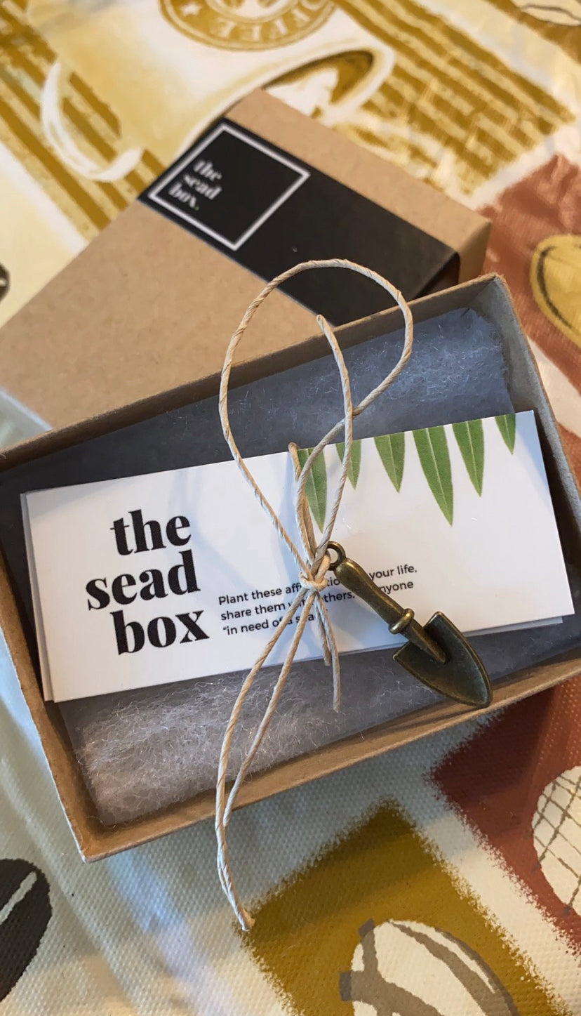 The Sead Box