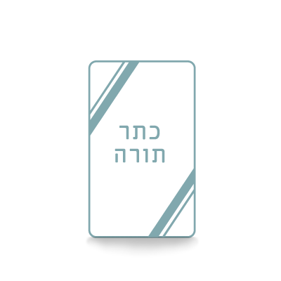 Modern Torah Covers
