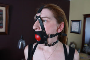 Harness Muzzle Gag with Open Hole - Black / Blue / Red / White