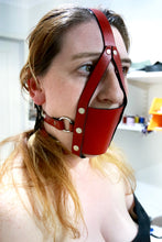 Load image into Gallery viewer, Classic Harness Muzzle - Black / Blue / Red / White